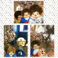 PhotoGrid_1459008068434.jpg