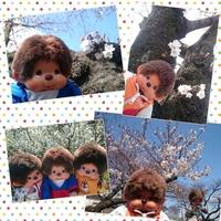 PhotoGrid_1458971354108.jpg