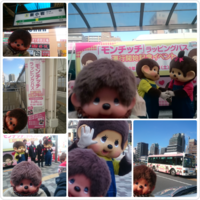 PhotoGrid_1487988862760.png
